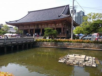 四天王寺池の亀