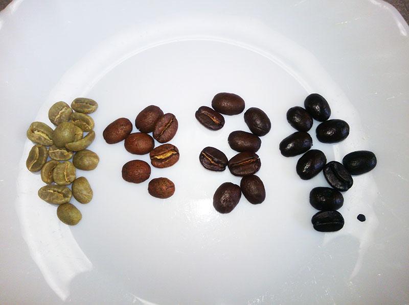 コーヒー豆の焙煎の段階