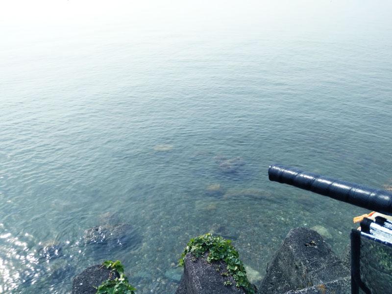 長浜付近の水