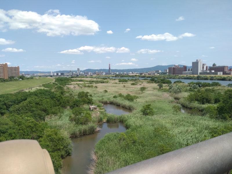 淀川河川敷 Hideout