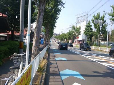 43号線 少路付近 自転車レーン