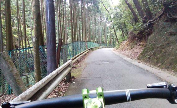 千束町への林道