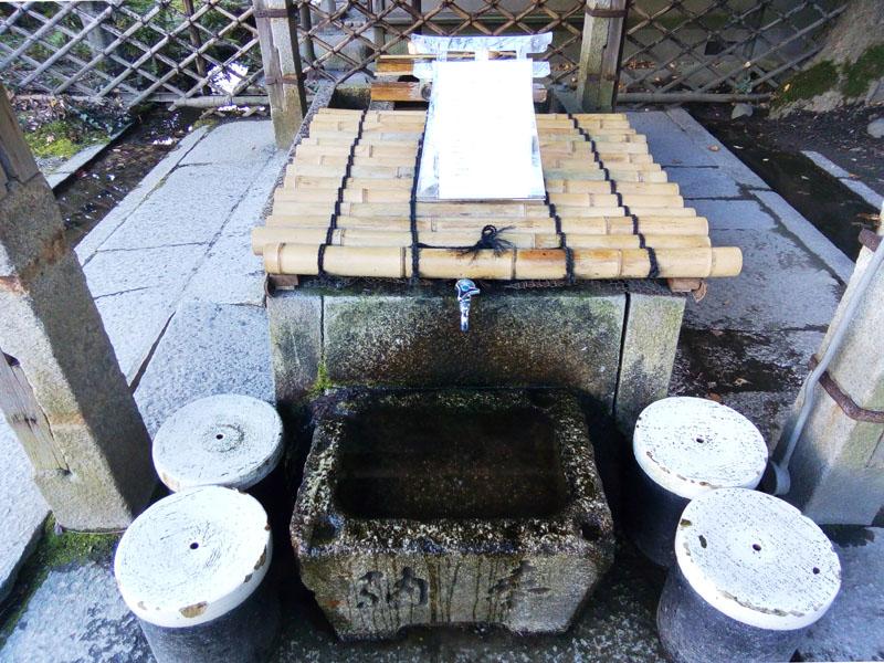 染井の水 捕獲レベル2