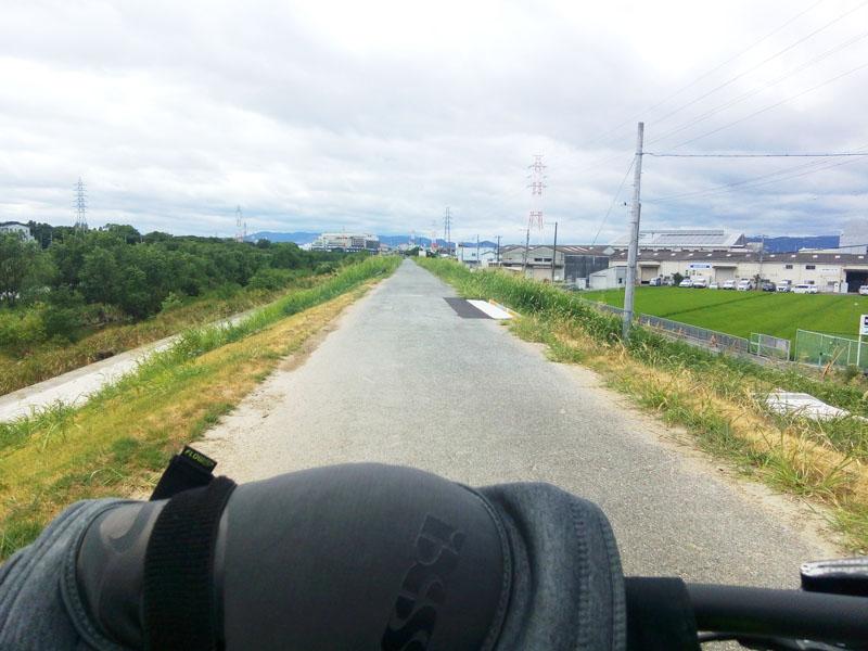 猪名川サイクリングロード 下流の土手上