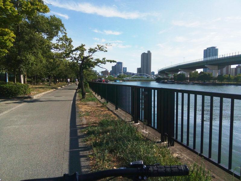 北大阪サイクルライン 序盤は自転車道