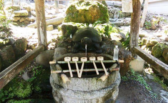 捕獲LV8 松尾大社亀の井のゴッドウォーター
