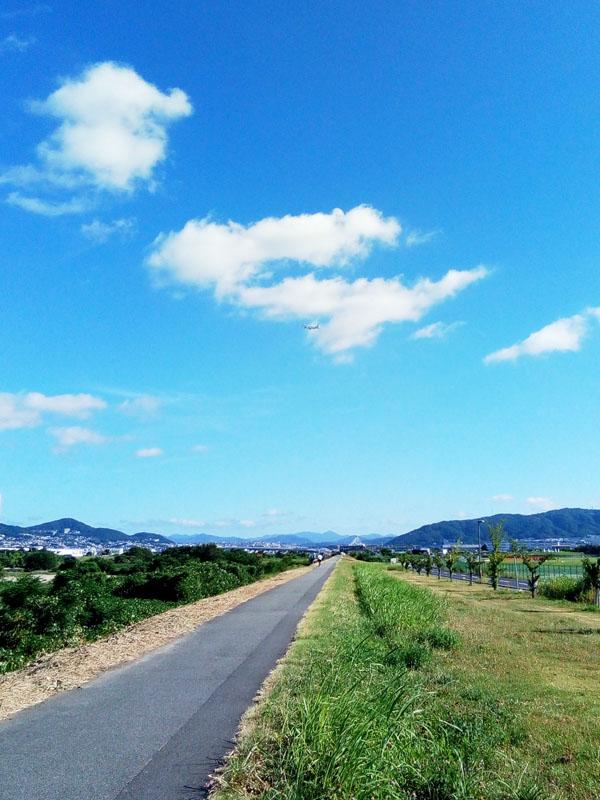 猪名川サイクリングロード 伊丹空港の滑走路横