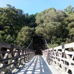 京都サイクリングコース あえての観光名所回避が快適ライドの近道