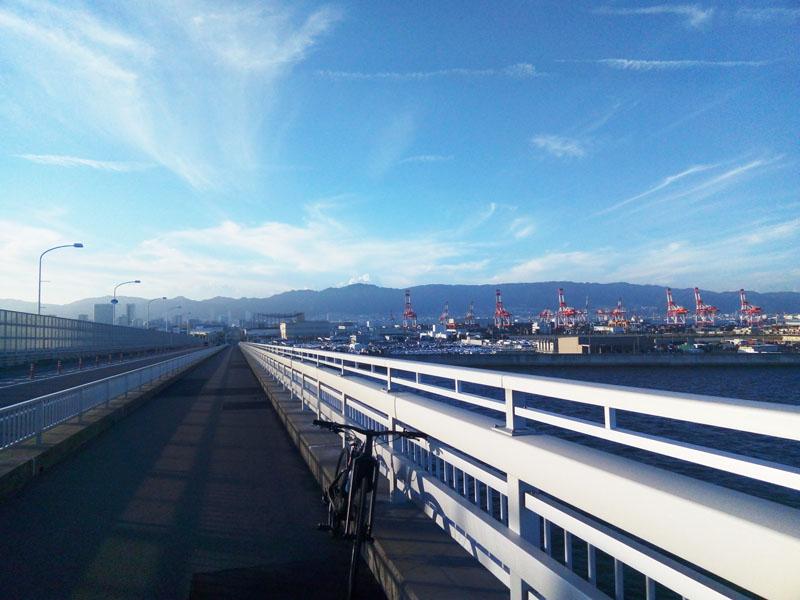 神戸の街と六甲山系