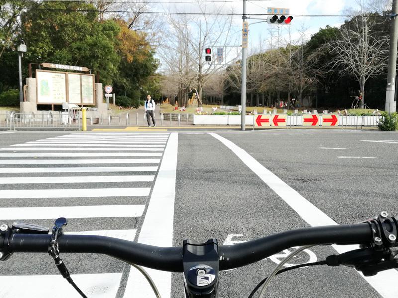 堺の大泉緑地