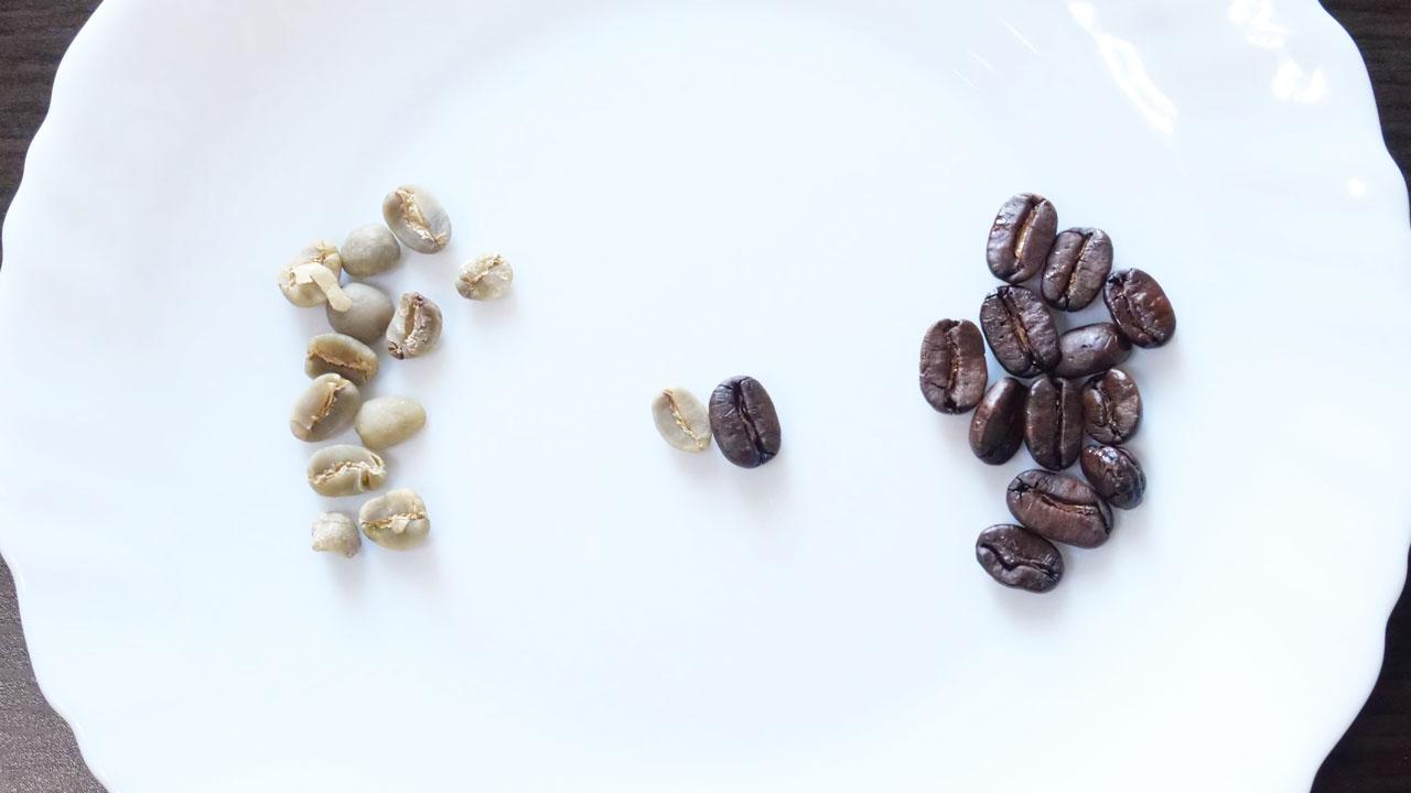左・生のコーヒー豆 右・焙煎したコーヒー豆